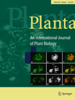 Planta - Journal cover