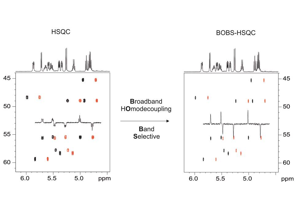 Full sensitivity and enhanced resolution in homodecoupled band-selective NMR experiments