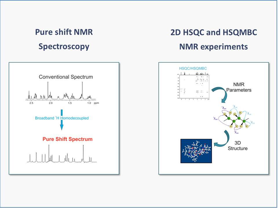 PhD Thesis: Development and application of modern pure shift NMR techniques and improved HSQC and HSQMBC experiments