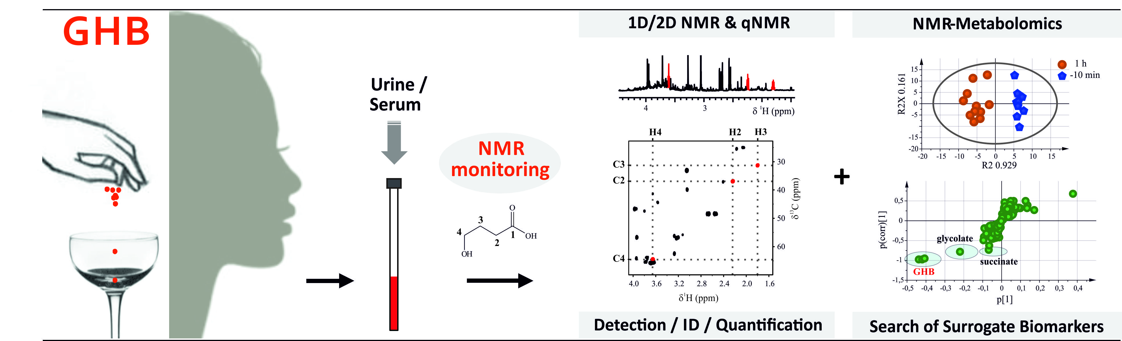 "NMR could improve the detection of ""date rape"" drug GHB"