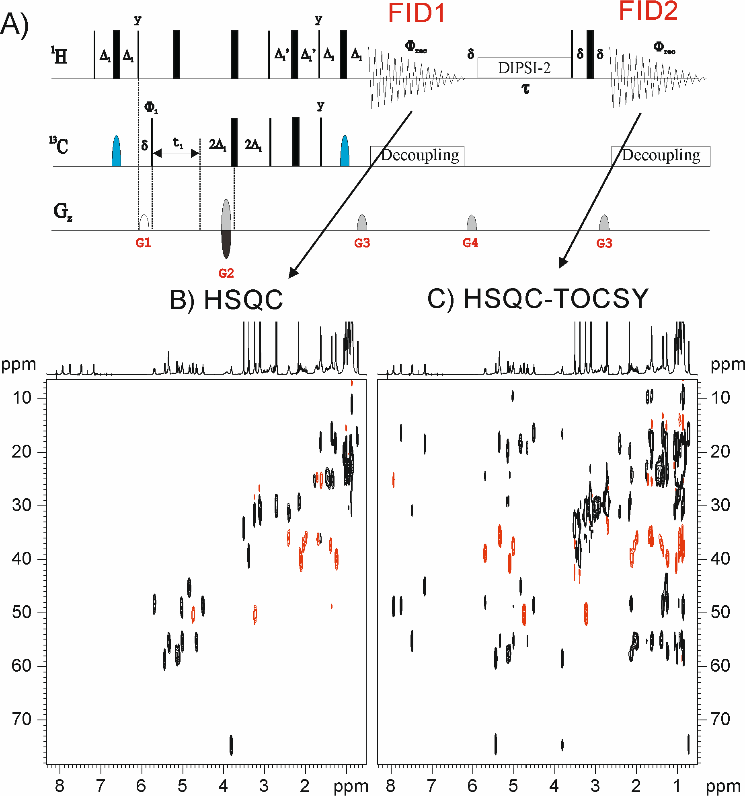 New time-efficient approach in TOCSY and HSQC experiments