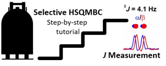 Measuring Long-Range Heteronuclear Coupling Constants with Sel-HSQMBC Experiments: A Tutorial